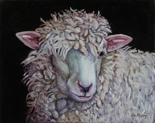 Unsold sheep