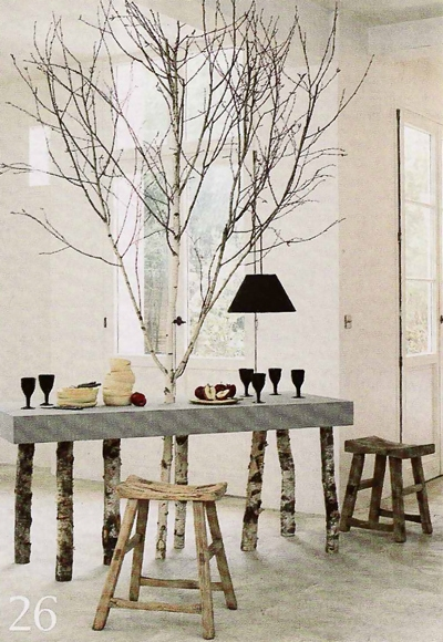 Birch indoors
