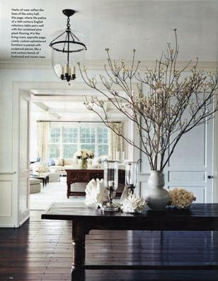 Branches stevengambrel