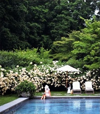 The Perfect Pool - Martha Stewart Living